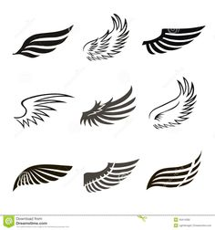 bird wing logo - Google Search