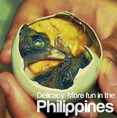 Balut (Egg Embryo) : The Most Delicious Street Food in the Philippines Gross Food, Weird Food, Scary Food, Filipino Dishes, Filipino Recipes, Filipino Food, Balut Egg, Bon Appetit, Comida Filipina