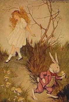 :: Sweet Illustrated Stroytime :: Illustration by Milo Winter :: Alice in Wonderland, 1916