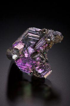Iridescent Polybasite rosette / Mineral Friends <3