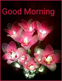 Good Day Quotes : QUOTATION – Image : Quotes Of the day – Description Good Morning….be happy Sharing is Caring – Don't forget to share this quote ! Good Morning Texts, Good Morning Happy, Good Morning Friends, Good Morning Flowers, Good Morning Messages, Morning Quotes, Gd Morning, Afternoon Quotes, Morning Pics
