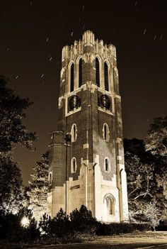 Beaumont Tower in East Lansing by perla marie