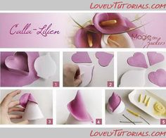 "МК лепка ""Калла"" –Gum paste (fondant, polymer clay)Calla Lily Flower making tutorial – Мастер-классы по украшению тортов Cake Decorating Tutorials (How To's) Tortas Paso a Paso Fondant Flower Tutorial, Fondant Flowers, Cake Tutorial, Fondant Butterfly, Fondant Toppers, Fondant Cakes, Cake Decorating Tutorials, Cake Decorating Techniques, Decors Pate A Sucre"