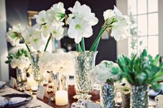 Amaryllis for winter wedding centerpieces is absolutely a fantastic idea!