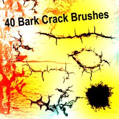 Bark Crack - Download  Photoshop brush http://www.123freebrushes.com/bark-crack/ , Published in #GrungeSplatter. More Free Grunge & Splatter Brushes, http://www.123freebrushes.com/free-brushes/grunge-splatter/ | #123freebrushes