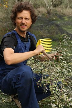 Olivenernte auf Korfu