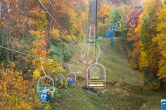 Get a front row seat to the spectacular colors of fall on the Ober Gatlinburg Ski Lift. Ober Gatlinburg, Gatlinburg Vacation, Ski Lift, Great Smoky Mountains, Amazing Adventures, Bed And Breakfast, Fall Halloween, Best Hotels, Front Row