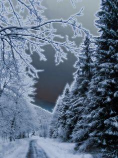 Snow!***
