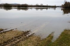 'Farmers and farming families are still under siege from rising flood waters' - Agriland