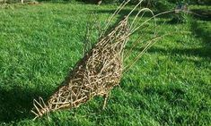 A chicken weaved from willow. Wonder if you could make one with kudzu. That we have plenty of...