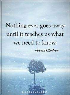 Quotes Nothing ever goes away until it teaches us what we need to know.