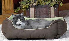 Lounge Sleeper Self-Warming Cat Bed | CozyWinters
