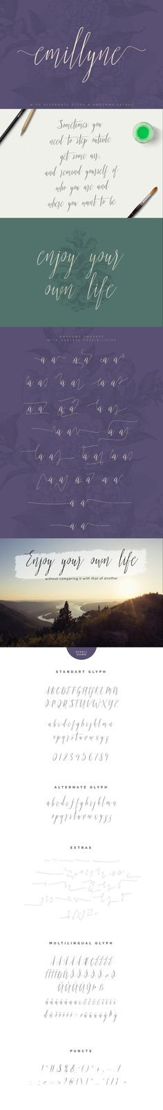 https://creativemarket.com/vuuuds/353608-Emillyne