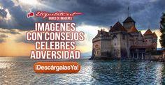 (LO + NUEVO)  Imagenes con consejos celebres adversidad ░▒▓██► http://etiquetate.net/imagenes-con-consejos-celebres-adversidad/