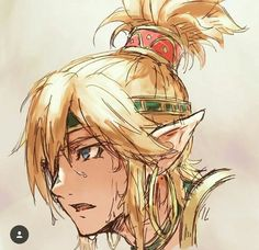 I love the Gerudo Voe outfit The Legend Of Zelda, Legend Of Zelda Memes, Legend Of Zelda Breath, Gerudo Link, Link Botw, Nintendo, Link Zelda, Twilight Princess, Breath Of The Wild