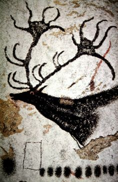 Paleolithic Cave Paintings, looks like the extinct Irish Elk.