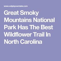 Great Smoky Mountains National Park Has The Best Wildflower Trail In North Carolina