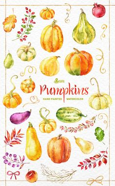 Pumpkins. 35 Watercolor Elements handpainted от OctopusArtis