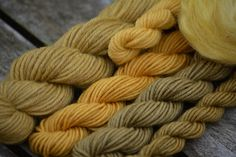 wool and fleece dyed with sulfur tuft (grünblättriger Schwefelkopf)