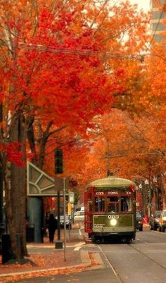 Autumn on the trolley... #AutumnBeauty