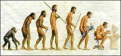Graphic of seven figures in an evolutionary arc, starting with a monkey, with a figure standing upright in the middle, ending with a person hunched over at a computer.