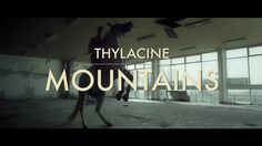 Thylacine - Mountains (Official Video) on Vimeo