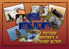 """Picture writing prompts are a great way to spark students' creativity. This set includes twenty animal pictures (four per A4 sheet) that can be printed, cut and laminated for use in your writing workshop or in a center. There are two versions of each picture; one with """"starter questions"""" on the back of the prompt to get students going."""