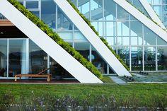 mais uma grande contribuição para a sustentabilidade na arquitetura:  conheça 8 projetos incríveis com telhados verdes: https://www.bimbon.com.br/inspire-se/8-projetos-de-arquitetura-com-telhados-verdes?utm_content=buffer5f7f7&utm_medium=social&utm_source=pinterest.com&utm_campaign=buffer