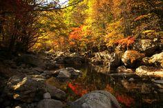 Тогюсан (Deogyusan national park) - Босиком по мостовой...