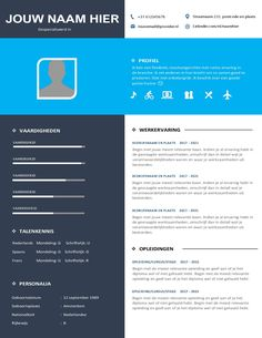 Euro CV Template • Curriculum Vitae 2020 • Perfect Image, Perfect Photo, Love Photos, Cool Pictures, Modern Cv Template, Creative Resume Templates, Resume Cv, Curriculum, Euro