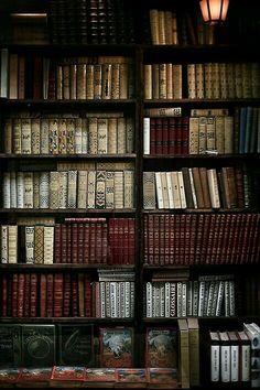 Image about aesthetic in dark academia by hellboy Dragon Age, Old Books, Books To Read, Antique Books, Le Vieux Logis, Quotes Literature, Book Aesthetic, Aesthetic Outfit, Aesthetic Dark