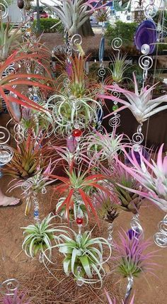 Air plant charms – Best Garden Plants And Planting Air Plant Terrarium, Garden Terrarium, Planting Succulents, Planting Flowers, Cacti Garden, Moss Garden, Succulent Planters, Cactus Plants, Plant Crafts