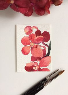 Red orchid - watercolour ACEO painting inches by Zoya Makarova Arches Watercolor Paper, Watercolour Painting, Winsor And Newton Watercolor, Original Art, Original Paintings, Red Orchids, Artist Card, Artist Trading Cards, Australian Artists