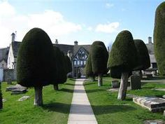 Painswick, Gloucester, England.  Only 99 Yew trees ever grow here!
