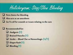 Helichrysum - Anticoagulant & Coagulation