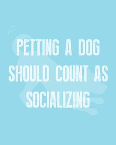 Petting a dog should really count as socializing 🤣 Who's with me? 🙋 #WeeklyPLAYQuote #dogquotes #dogmoments #dogsarethebest #dogloversfeed #dogslife #dailydogs #wedontdeservedogs #dogsarebetterthanhumans #dogsareloves #dogsarethebest #dogsmakeeverythingbetter #dogmeme #introvert #caninetrovert #dogsayings #dogjokes #dogmomaf #mood Cute Cat Quotes, Dog Quotes Funny, Funny Dogs, Play Quotes, Dog Jokes, Animal Quotes, Four Legged, Introvert, Dog Mom