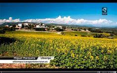 Aragón Televisión queda impresionado por la belleza de la vistas desde Bodegas Obergo: el Pirineo de Huesca al fondo, el encantador pueblo de Ubiergo muy cerca y unos campos hermosos que vigilan atentos cada movimiento. Vienes?