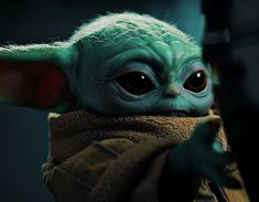 BROTHERTEDD.COM - bladesrunner: Hey, go on. That's who you belong... Yoda Meme, Yoda Funny, Yoda Gif, Star Wars Baby, Pedro Pascal, Star Wars Pictures, Chapter 16, Star War 3, Baby Groot