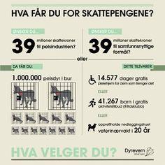#Infografikk fra #Dyrevernalliansen #pelsdyr #politikk