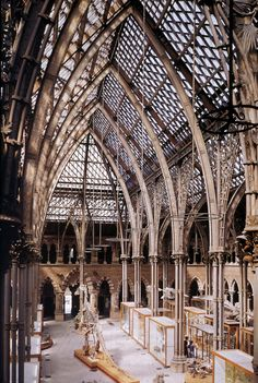 Deane & Woodward:  Oxford Science Museum  Interior View Central Court  begun 1853