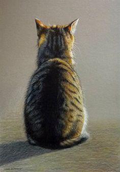 Sue Warner - Peintre et Dessinatrice Animalière - Chat de dos