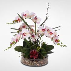 Dainty Pink Cream Silk Phalaenopsis Orchid & Artificial Succulents Arranged with Natural Pebbles in a Glass Bowl Orchid Flower Arrangements, Orchid Centerpieces, Artificial Flower Arrangements, Silk Orchids, Phalaenopsis Orchid, White Orchids, Hydrangea Not Blooming, Hydrangea Flower, Cactus Flower