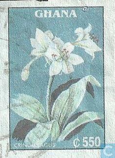 Postage Stamps - Ghana - Floral