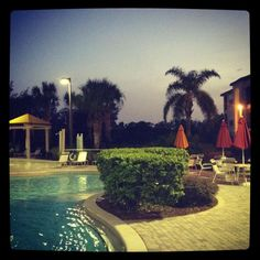Evening Pool Kissimmee Florida, Screened In Patio, Vacation Home Rentals, Walt Disney World, Orlando, Condo, Country Roads, Mansions, House Styles