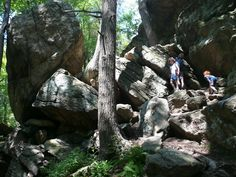 AMC's Great Kids, Great Outdoors: 10 Great Appalachian Trail Hikes with Kids