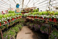 2011 Market Garden!