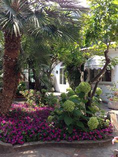 Positano,Italy....charming courtyard in Positano.