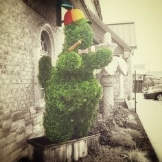 "Put a Topiary squirrel in front of your Mexican restaurant in Indiana and you'll be a hit. ""Untitled."" George Bernabe for CA+T's ""Out of Sight"" project. 2014. #artandthought #hidden [Follow CA+T on Instagram: ""artandthought""]"