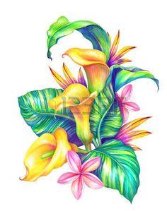 dessin fleurs exotiques: feuilles et fleurs tropicales abstraites, illustration d'aquarelle