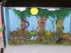 Habitat Project Science Ideas, Science Projects, School Projects, School Ideas, Projects To Try, Biome Project, Zoo Project, Project Ideas, Nursing Home Activities